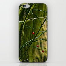 Red in the Forest iPhone & iPod Skin