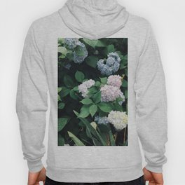 Hydrangeas in the Yard Hoody