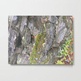 Moss G ranite Metal Print