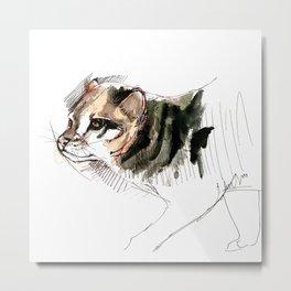 Realistic  Flat-headed cat (c) 2017 Metal Print
