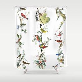 Birds - Art - Vintage - Pattern - Illustration - Nature Shower Curtain