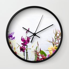 Different orchid plants on white background Wall Clock