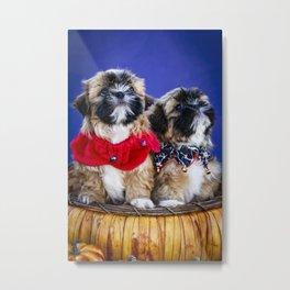 Two Shih Tzu Puppies Wearing Halloween Collars Pose in a Pumpkin Basket Metal Print