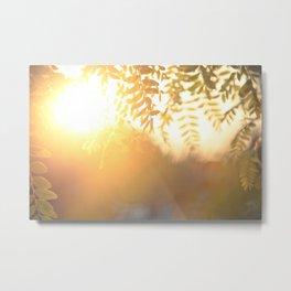 Sun Soak Metal Print