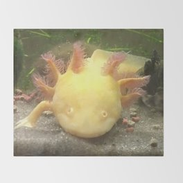 Sunshine the Axolotl Throw Blanket