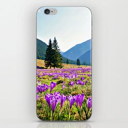 Spring in the Mountains iPhone Skin