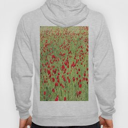A Pasture Of Red Poppies and Remembrance Hoody