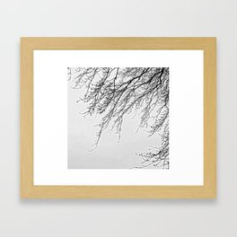 Tree Branches and Twigs - Minimalist Art Framed Art Print