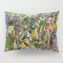 Lesser Goldfinch Pillow Sham