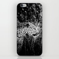 leopard iPhone & iPod Skins featuring Leopard by BethWold