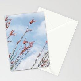 Budding Ocotillo by Murray Bolesta Stationery Cards