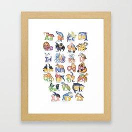 Australian Animal Alphabet, Nursery, Baby, Children, Kids Room, Wall Art Framed Art Print
