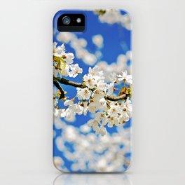 Spring Blossom IV iPhone Case