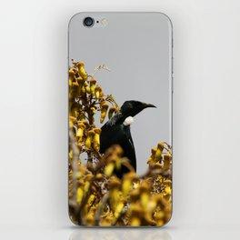 New Zealand Tui bird iPhone Skin