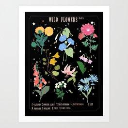Wild flowers botanical  Art Print