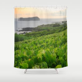 Grapevines and islet Shower Curtain