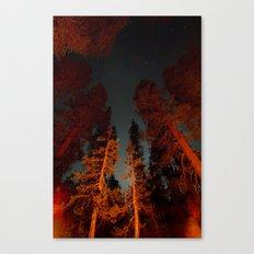 Long exposure at Yosemite Canvas Print