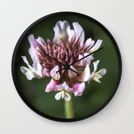 Red Clover Flower Wall Clock