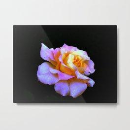 Pink And Gold Rose Metal Print
