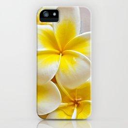 Plumeria Blossoms iPhone Case
