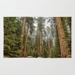 Sequoias in the Fog Rug