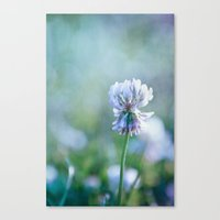 clover Canvas Prints featuring clover by Iris Lehnhardt - Photography