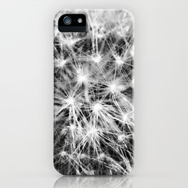 Fractals - Fine Art Black and White Abstact Nature Photograph, Cacti iPhone Case