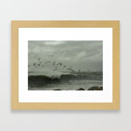 Birds dancing in the waves Framed Art Print