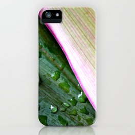 Organic Ombre iPhone Case