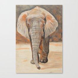 Portrait Of An Elephant Canvas Print