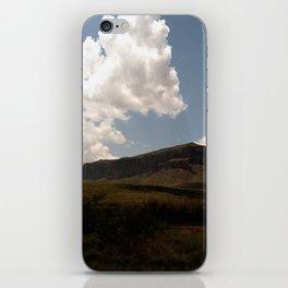 texas iPhone Skin
