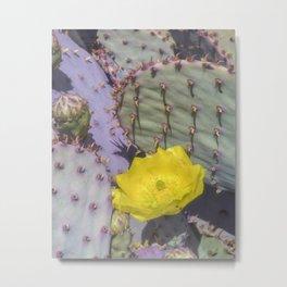 Santa Rita Prickly Pear Metal Print