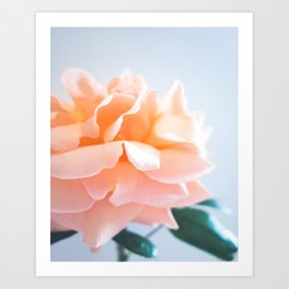 Light And Airy Art Print