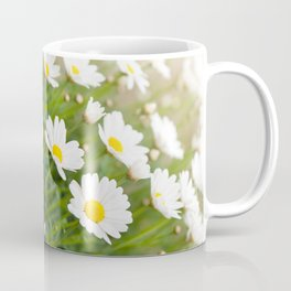 White chamomiles herb flowering plant Coffee Mug