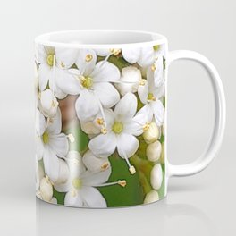 Insects on white wild flowers Coffee Mug