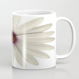Symmetrical African Daisy with White Petals Coffee Mug