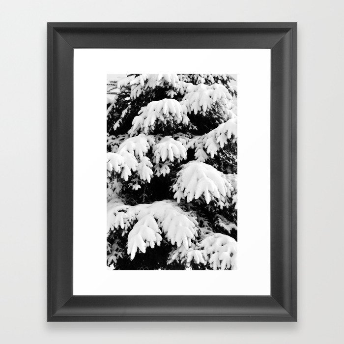 Snow Covered Fir Tree Framed Art Print