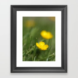 Buttercup Blur Framed Art Print