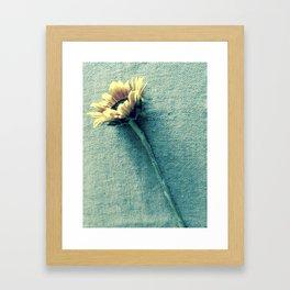 Sunflower on Denim Blue Framed Art Print