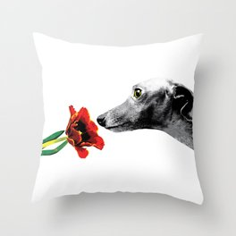Italian Greyhound smelling flower Throw Pillow