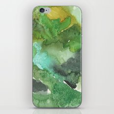 Aerial View 4 iPhone & iPod Skin