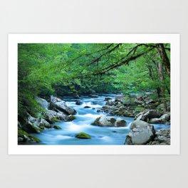 Mountain Stream 1 Art Print