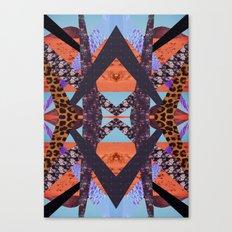 VISIONARY ENERGY Canvas Print