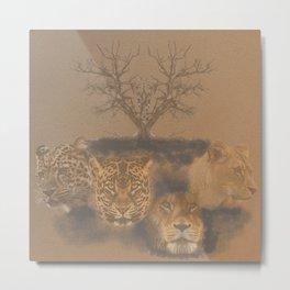 African big cats, Africa, big cats Metal Print