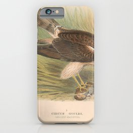 002 Allied Harrier circus gouldi4 iPhone Case