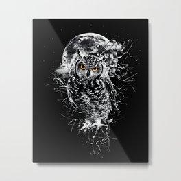 OWL BW II Metal Print