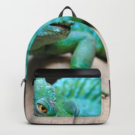 Gecko Reptile Photography Backpack