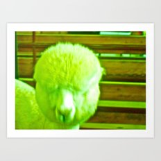 What Are You Looking At Art Print