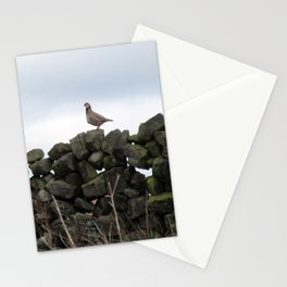 Partridge on a Wall Stationery Cards