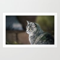 study Art Prints featuring Study by CrookedHeart